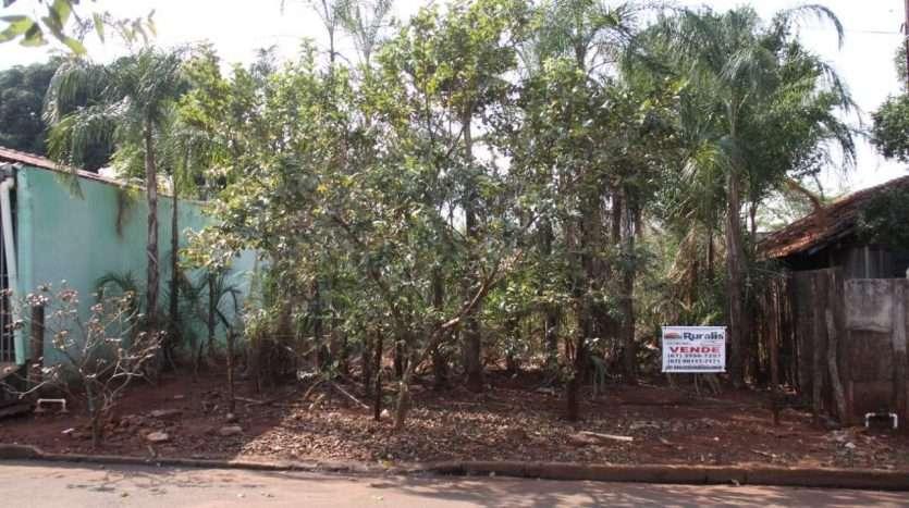 ruralisimobiliaria imovel venda vila pernambuco img 4921
